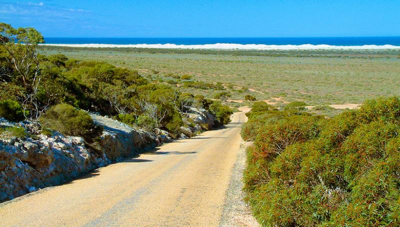 The old Eucla road with the sand dunes that are swallowing the old Telegraph Station in the background.